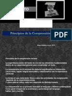 Principios de la Comprensiòn Lectora.pptx