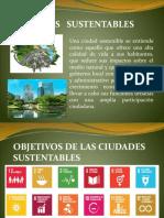 Presentación desarrollo sustentable