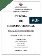 Equistosomiasis m. Tropical