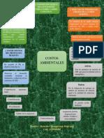 Mapa Mental - Costos Ambiental
