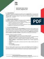Resumen-Ejecutivo-v4.5.docx