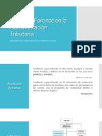 Presentacion Sat-Auditoria Forense