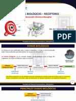 Sesion 01_Dianas Biologicas - Receptores