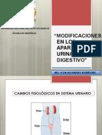 Modificaciones AP. Urinario y Digestivo