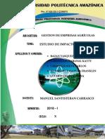 Estudio de impacto ambiental - imprimir.docx