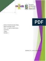 actividad 1 sociologia.docx