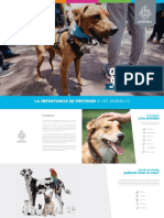 Manual de Protección Animal - Guadalajara 2018