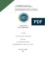 Informe de Fundamento