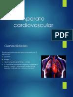 Aparato Cardiovascular(4)