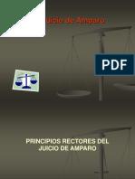 239973434-Juicio-de-Amparo-ppt.ppt