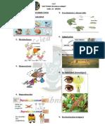 Bioquimica 2da Clase