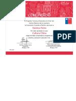 __ Plataforma E-Learning Cruzando El Pacífico _