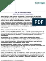 Frijol Infoagro