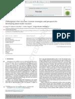 Chikungunya Virus Vaccines 2015