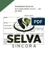 Reunioes Selva 2018