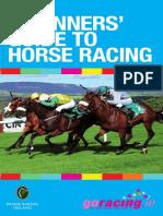 Beginners Guide 2012
