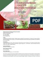 Chili Production L2[Cur]