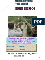 Puente-Peatonal-234.doc