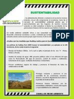 210318 Reporte Diario SSO.