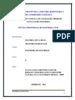 Informe de Seguridad de Riesgos y Peligros