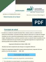 4 EISE Modelo Interdisciplinario Determinantes (1)