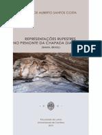 Tese - Representações Rupestres No Piemonte Da Chapada Diamantina
