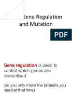 12-4 gene regulation and mutation