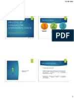 1° Clase Proceso de Evaluación Fonoaudiológica