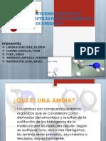 De Las Caracteristicas Fisicas y Quimicas de Compuestos Aminados 1