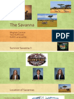 savannas 2