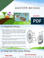 Anatomi Batang Ppt