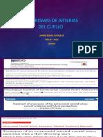 Aneurismas y Tumores Arteriales Del Cuello