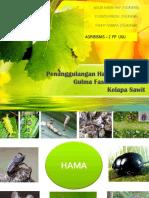 Penanggulangan Hama, Penyakit, Gulma Fase TBM.pptx
