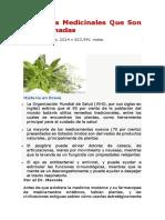 7 Plantas Medicinales Que Son Subestimadas