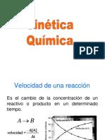 Cap 10. Cinética Química