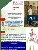 Osteologia de Miembro Superior