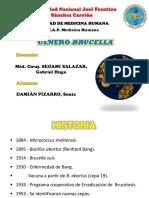 Género Brucella