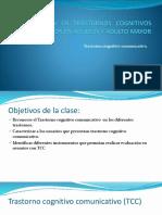 Trastorno Cognitivo Comunicativo.pdf