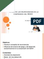 SDAH neurociencias (1)