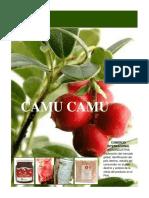 CamuCamu