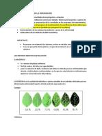 Evaluación y Medición de Las Enfermedades