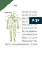 Anatomy & Physiology of Dengue