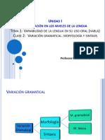 agosto Lengua y variabilidad 2.pdf