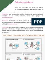 señalizacion (1)