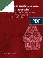 DSD in Indonesia Ediati-2014