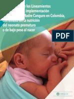 Implementación Programa Canguro 2017