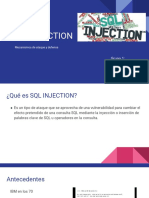 321887836-SQL-Injection-g1.pdf