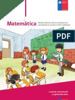 Guia-MAT_ORGANIZANDO_FINAL.pdf