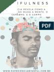 A Ciencia Do Mindfulness