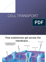CELL+TRANSPORT